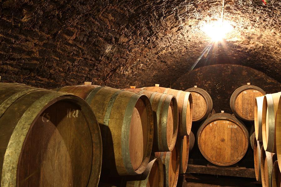 Kősziklás borászat