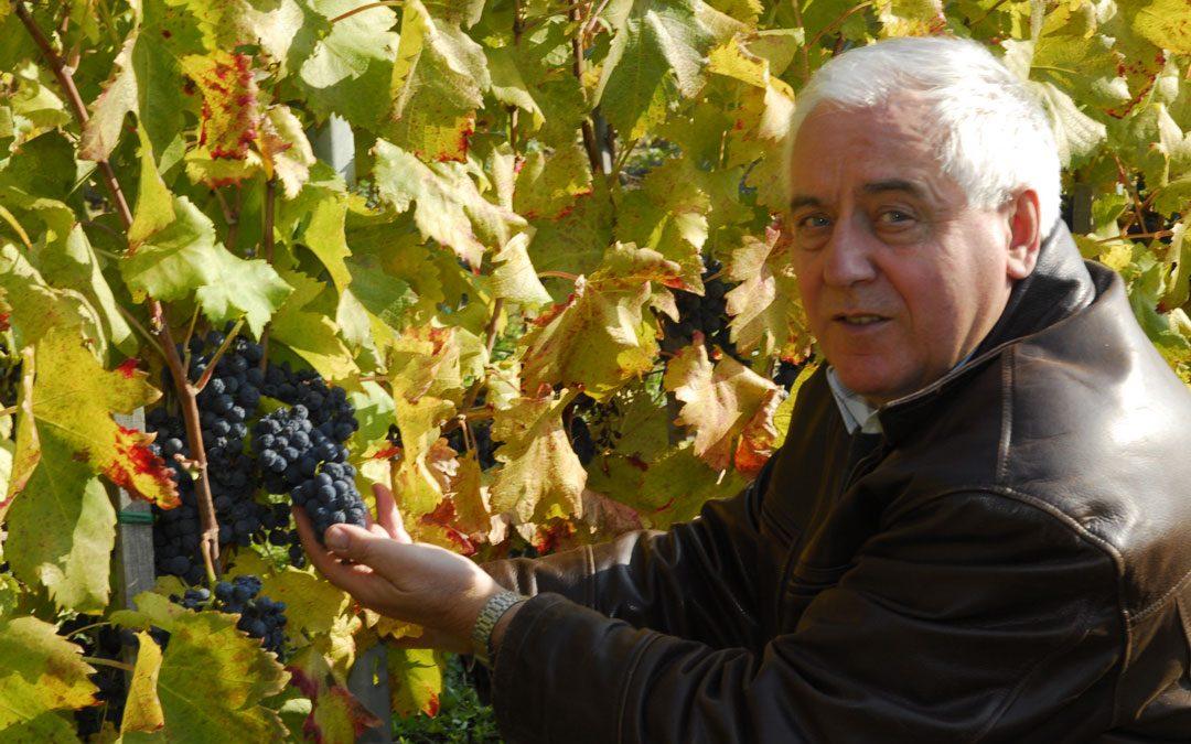 Mészáros Pál Kadarka Classic és Pinot Noir Rosé